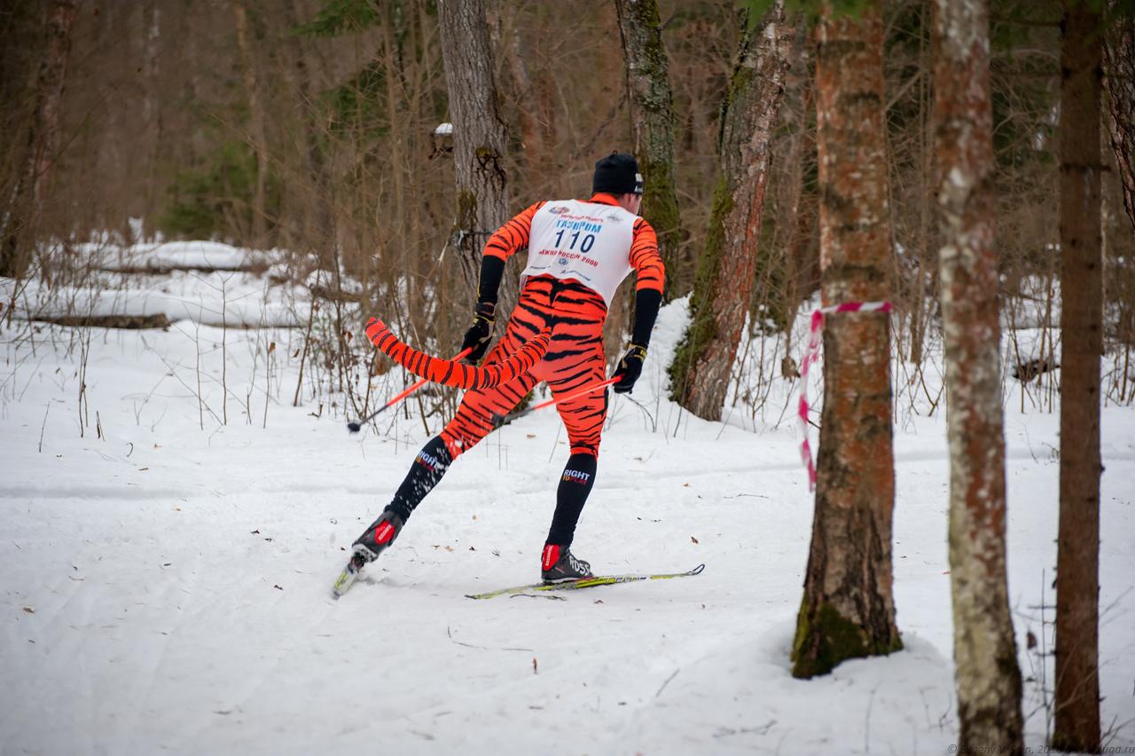 Лыжник в костюме тигра