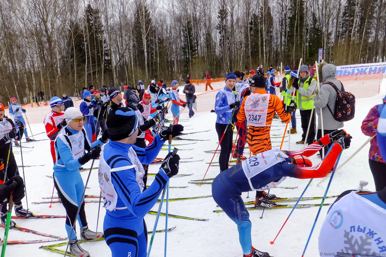 Лыжня России 2016 в Калуге